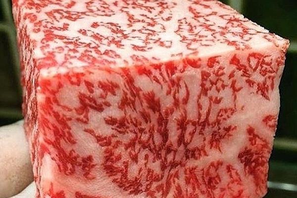 jenis-jenis daging sapi