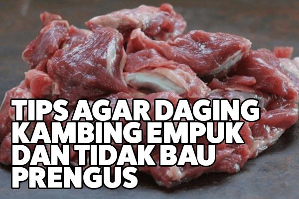 cara membuat daging kambing empuk dan tidak bau prengus