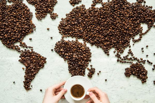 jenis kopi indonesia