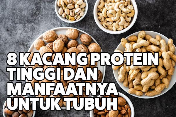 kacang protein tinggi